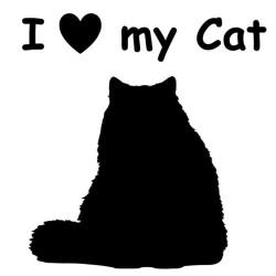 Aufkleber Katze 1