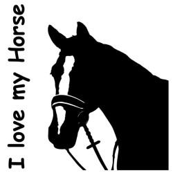 Aufkleber Pferd 3